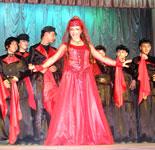 Костюмы для грузинского танцевального ансамбля